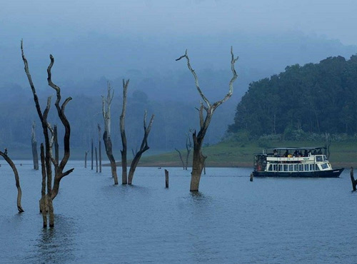 Munnar Tourism Kerala, Places in Kerala, Grassroot Holidays
